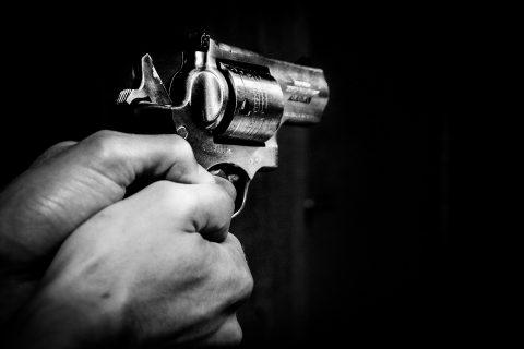 Firearm Gun Control Rights Guns