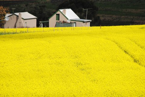 Land EWC Expropriation without Compensation Rural Farm
