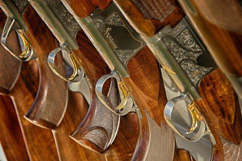 Guns Gun Arms Trade Firearms