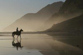 Multicultural Communities Cape Town Horse Rider Vigilante