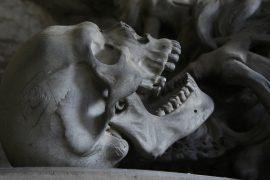 Human Being Skull Evolution Death